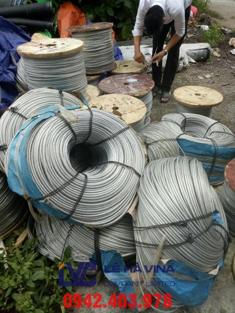 cáp bọc nhựa, cáp thép bọc nhựa, cáp thép, cáp thép xây dựng, cáp bọc nhựa có đầu bấm chì